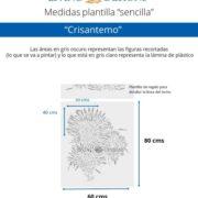 Medidas Crisantemo (Small)