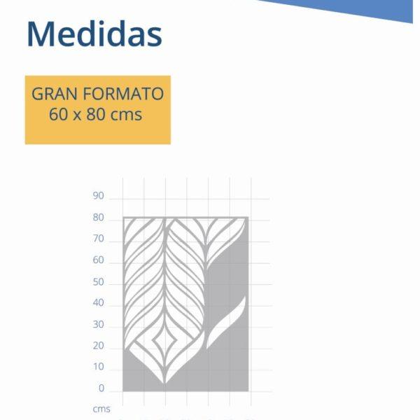 MEDIDAS ESCANDA (Medium)-min